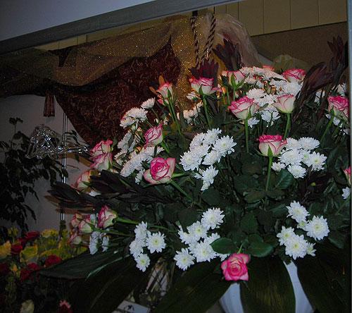 Плетущиеся цветы для сада прочные и