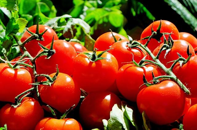 помидоры, красный, продовольственная