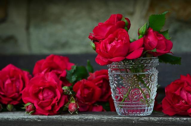 розы, красные розы, букет из роз
