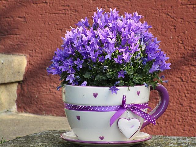 цветочный горшок, кубок, цветы