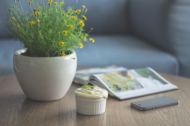 цветы, горшок, цветочный