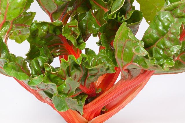 мангольд, beta vulgaris, стебель травы
