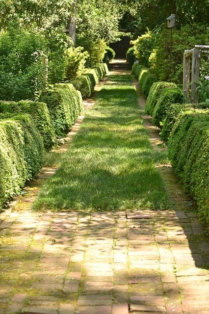 пути, сад, камень
