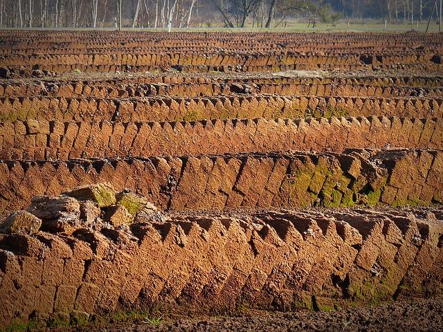 торф, почва potting, торфяной