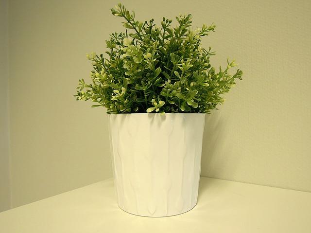 завод, комнатное растение, пластиковый цветок