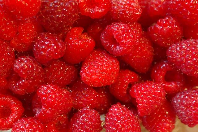 малина, фруктов, ягод