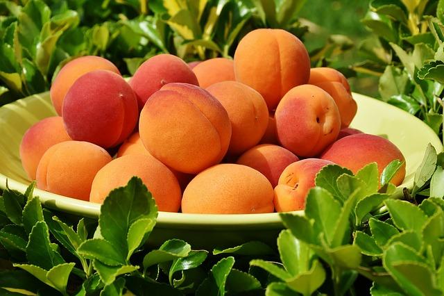 абрикосы, абрикос, фруктов