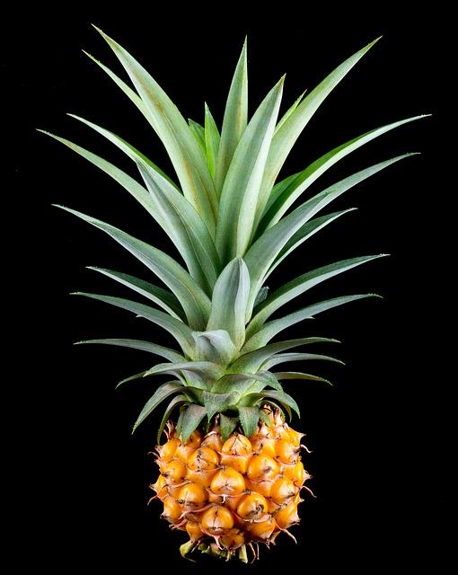 ананас, маленький ананас, фруктов