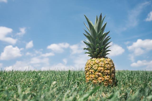 ананас, поле, гостеприимство