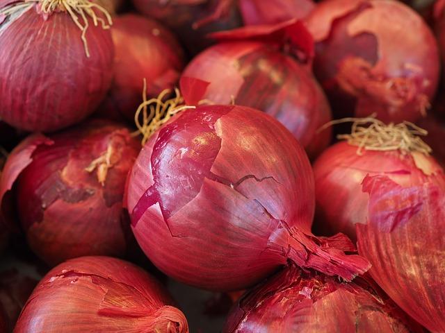 красный лук овощи, растительное лук, лук
