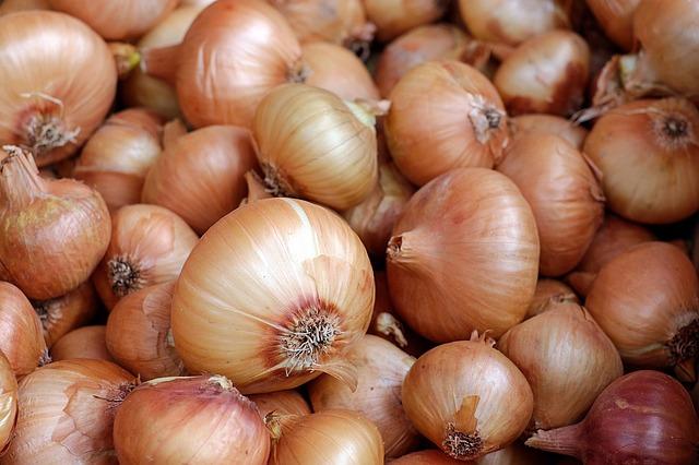 лук, овощи, продовольственная