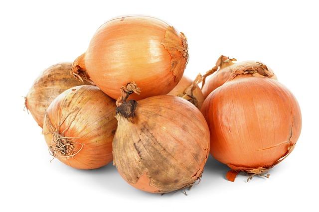 луковицы лука, питание, свежие