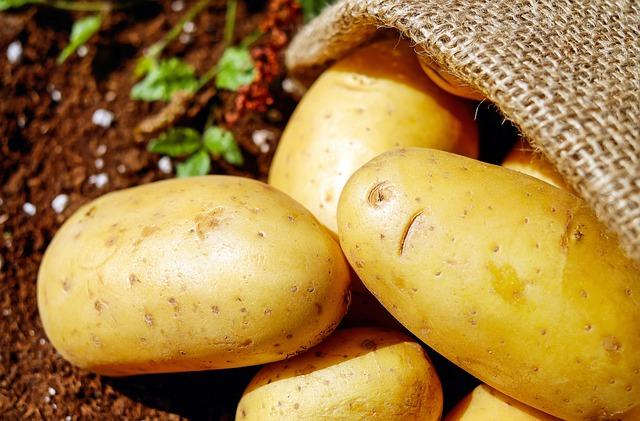 картофель, овощи, erdfrucht